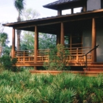 Architectural Cypress