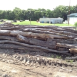 Assorted Hardwood Logs - For Sale