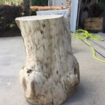 29 Debarked Cypress Stump