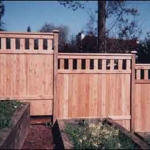 30 Common Cypress Fence