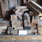 Old Growth Pecky Cypress Blocks