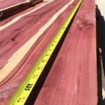 3ft to 6ft and longer lengths! Eastern Red Cedar /Juniperus Virginiana / Aromatic Red Cedar / Pencil Cedar / Eastern Juniper