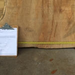 Maple Slab 2-in Thick x 29-in Wide x 6ft 8-in Long. 32 Boardfoot.