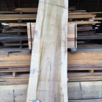 Poplar Slab 2-in Thick x 31-in Wide x 10ft 6-in Long. 54 Boardfoot.